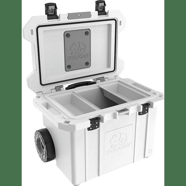 55QT Tailgater Cooler