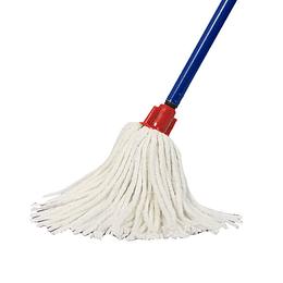 Mopa seca doméstica