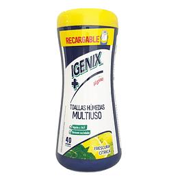 Paños húmedos desinfectantes 40 unidades