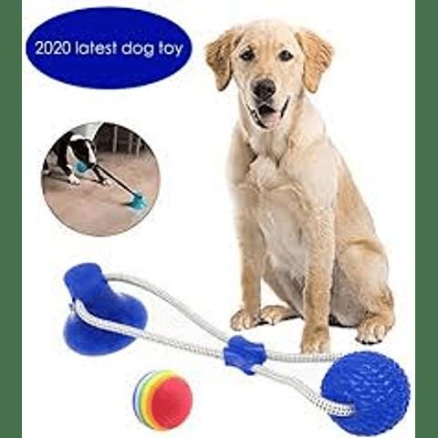 Juguete. Pelota atada a sopapo para perro