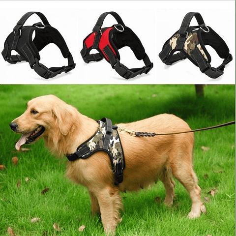Arnés rectangular para perro