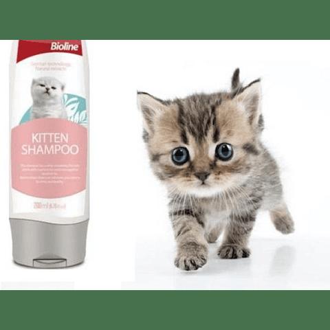 Shampoo para gato cachorro Bioline.