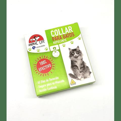 Collar contra pulgas, para gatos.