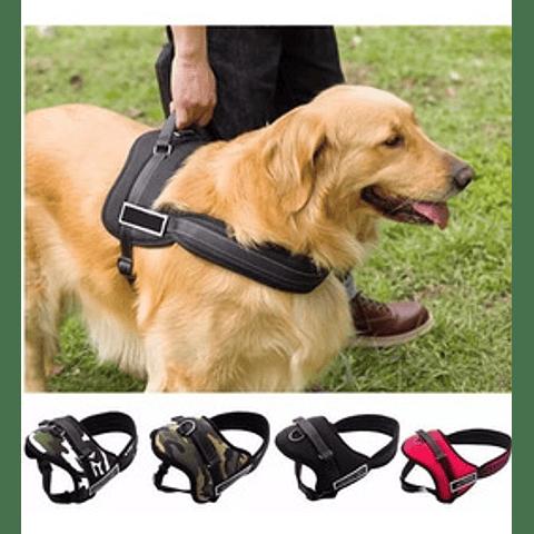 Arnés para perro Pet Dog