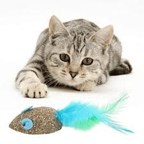 Juguete. Ratón de catnip para gato