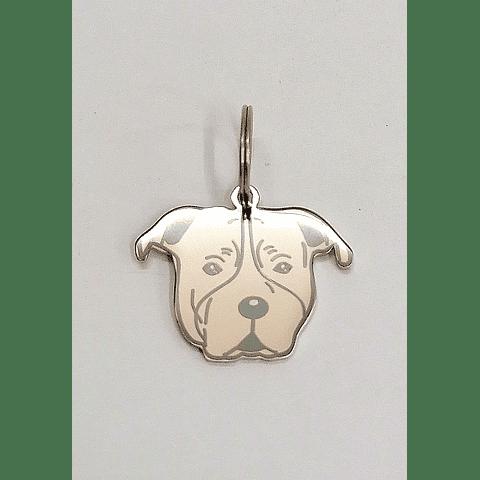 Accesorio. Medallitas de mascotas.