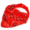 Collar ajustable con bandana para mascotas.