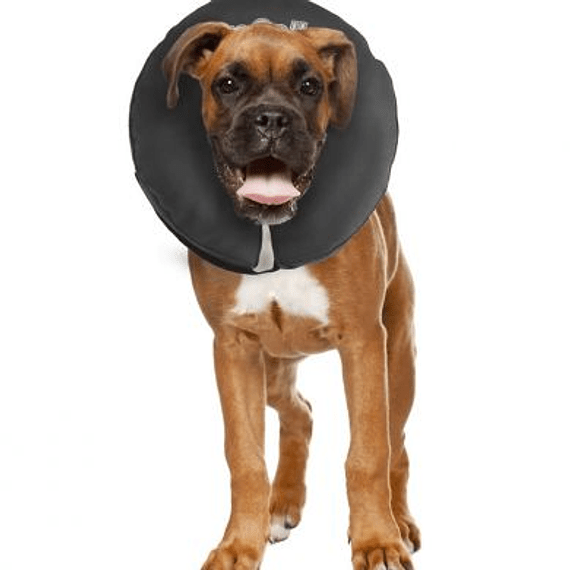 Collar Inflable Post Operatorio 33-45cms LG