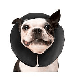 Collar Inflable Post Operatorio 25-33cms M