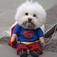 Superman Talla SM