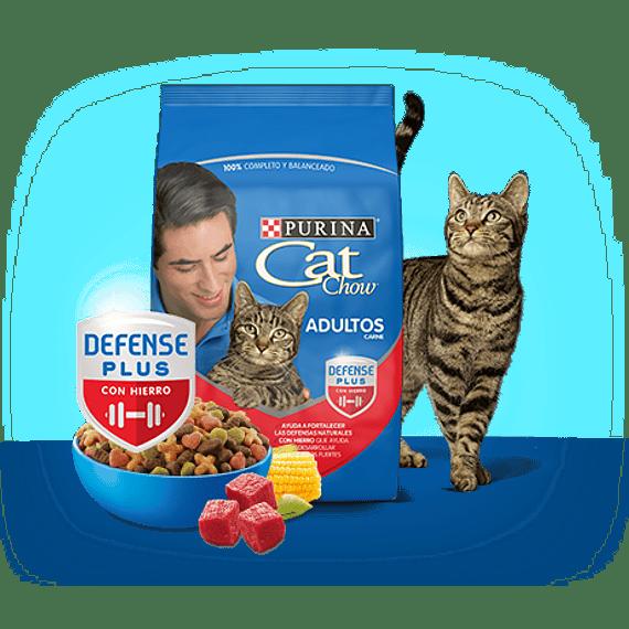 CatChow Adulto Delicias Carne 3kgs