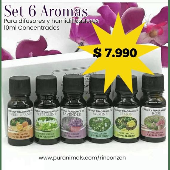 Set 6 Aromas Concentrados