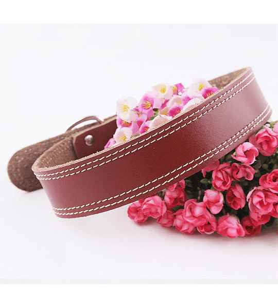 Collar Cuero Natural Liso 5