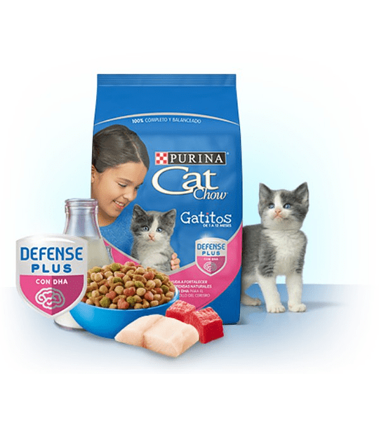 CatChow Gatitos 3kgs