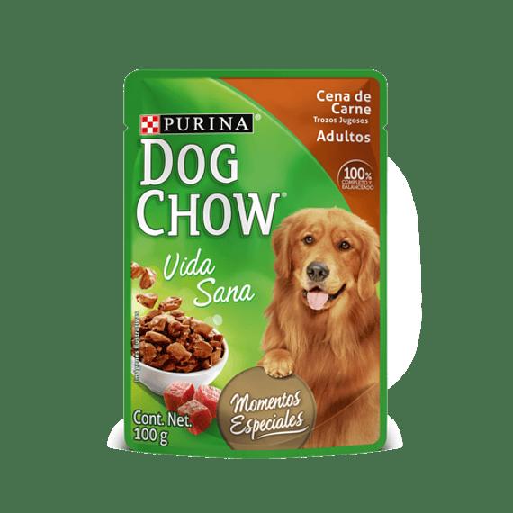 DogChow Sachet 100grs X 4UN