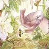 Daphnis | Puzzle Art & Fable 1000 Piezas