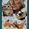 Watcher, Protector   Puzzle Art & Fable 500 Piezas