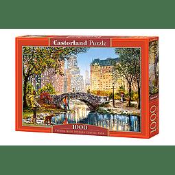 Caminata nocturna por el Central Park | Puzzle Castorland 1000 Piezas