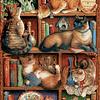 Feline Bookcase   Puzzle Cobble Hill 2000 Piezas