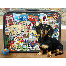 Dachshund 'Round The World | Puzzle Cobble Hill 500 Piezas