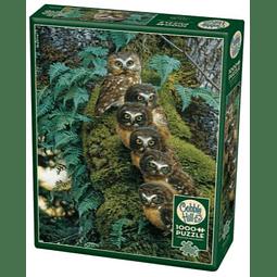 Family Tree | Puzzle Cobble Hill 1000 Piezas