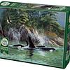 Orcas | Puzzle Cobble Hill 1000 Piezas