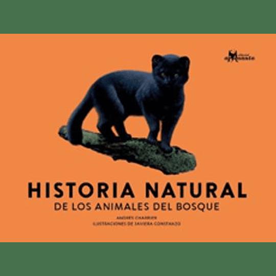 Historia Natural De Los Animales Del Bosque