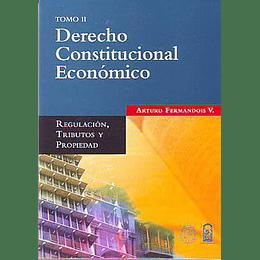 Derecho Constitucional Economico Tomo Ii
