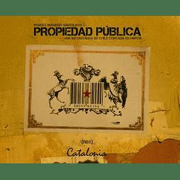 Propiedad Publica. Una Instantanea De Chile Contada En Muros