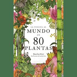 Vuelta Al Mundo En 80 Plantas, La