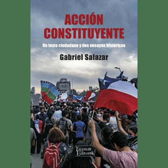 Accion Constituyente