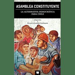Asamblea Constituyente La Alternativa Democratica Para Chile