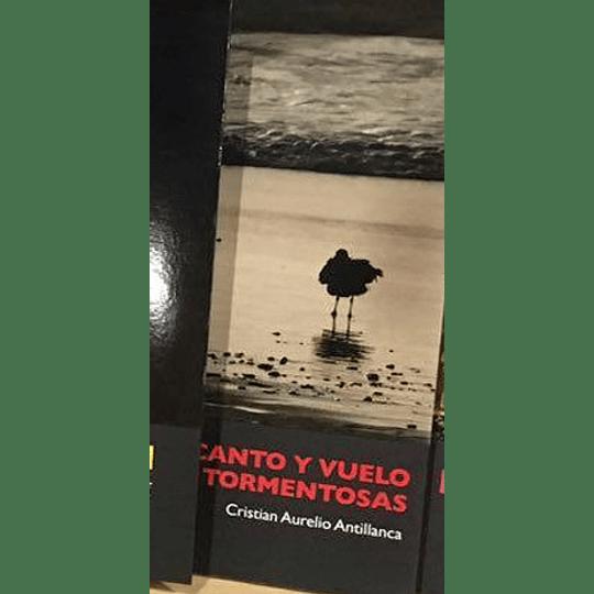 Canto Y Vuelo De Las Aves Tormentosas
