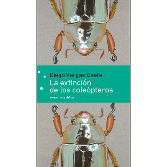 Extincion De Los Coleopteros, La