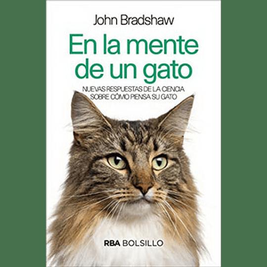 En La Mente De Un Gato