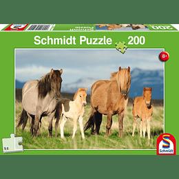 Puzzle Familia De Caballos 200 Piezas