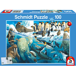 Puzzle Pinguinos 100 Piezas