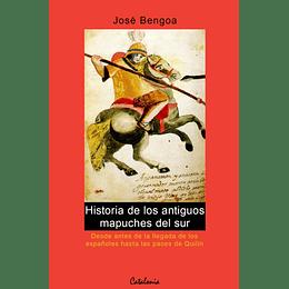 Historia De Los Antiguos Mapuches Del Sur