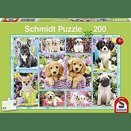 Puzzle Cachorros 200 Piezas
