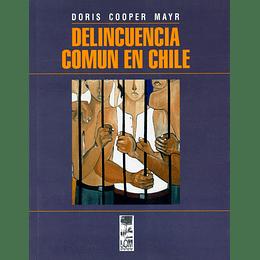 Delincuencia Comun En Chile