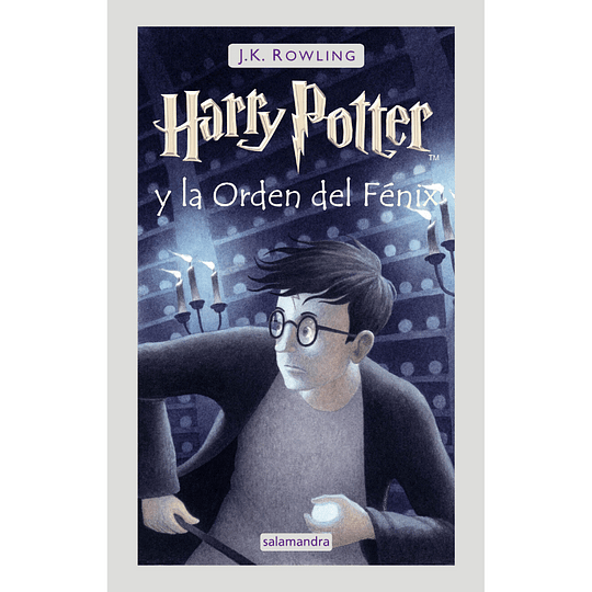 Harry Potter 5 (Td), Harry Potter La Orden Del Fenix