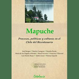 Mapuche. Procesos Politicas Y Culturas En El Chile Del Bicentenario