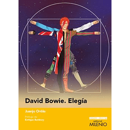 David Bowie, Elegia