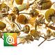 Althaus Infusión Chamomile Meadow - Flores de Manzanilla 75 gr - Image 2