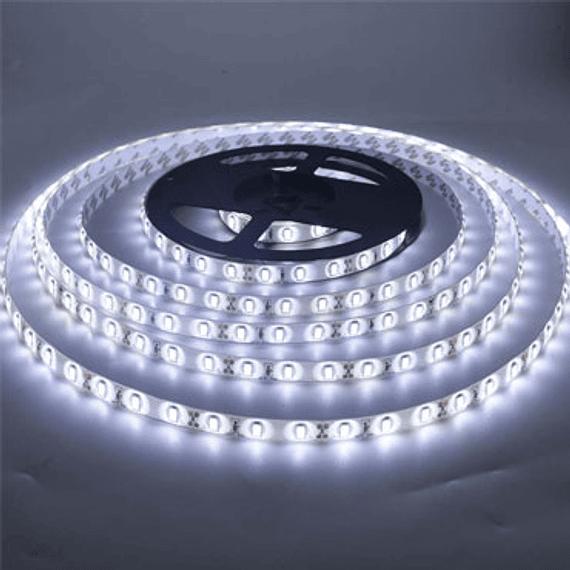 CINTA LED 5 MTS 300 LED BLANCA