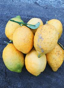 Limão 500 gr