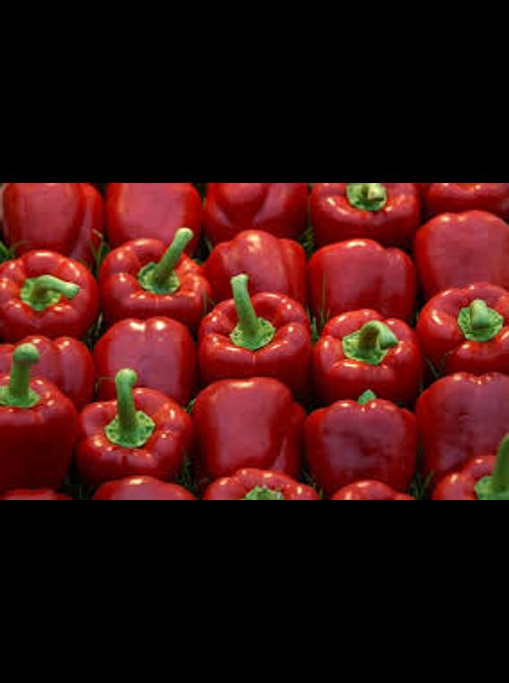 Pimento Vermelho 500gr