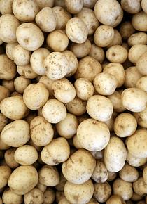 Batata miúda branca p / assar