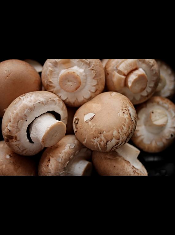 Cogumelo Portobello 350gr (de Portugal)