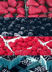Cabaz Frutos Vermelhos